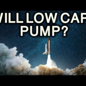 Will Low Cap Altcoins Ever Pump Again?!?!