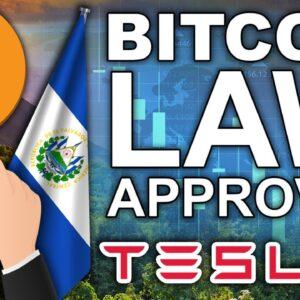 #1 To ACCEPT Bitcoin (SMARTEST Country ¡Viva El Salvador!)