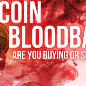 Danger Ahead? Crypto Bloodbath Rattling New Investors