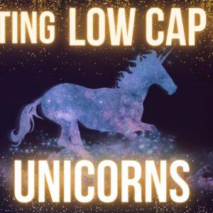 Hunting Low Cap Gem Altcoin Unicorns 🦄 📊