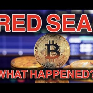 What Caused the Bitcoin Price Dip?!?