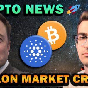 Crypto Market Crash and Bullish Altcoins