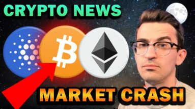 CRYPTO MARKET CRASH (What's Next?)
