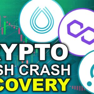 Crypto's Fight for Flash Crash Recovery (Top Altcoins to Follow 2021)