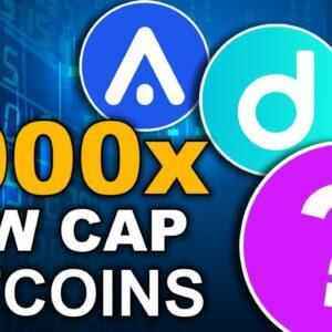 Top 3 1000X Altcoins (SUPER Low Cap Gems)